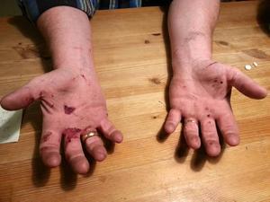 Med sina händer försökte Rikard att bryta upp rutan på bilen.