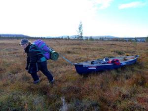 Höstpddling i Rogenområdet. I sol, snö och regn fick vi paddla,bära och som på bilden, i våtmarkerna släpa kanoten. Anneli fungerar bra som dragdjur,men sjönk ibland ner till låren.