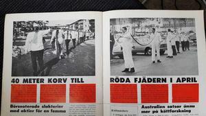 Köttbranschens egen tidning rapporterade både om den 20 meter långa korven i Kolbäck och den 21 meter tunnare varianten från Njurunda.