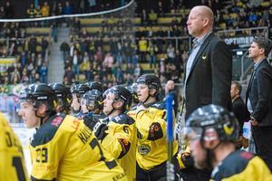 VIK får hoppas att de klarar sig bättre än majoriteten av de senaste nykomlingarna i Hockeyallsvenskan