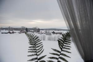 Öjestrands golfbana under ett tjockt snötäcke.