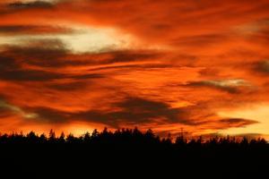 Himlen var inte bara mörk i December. Fagerstabon Eva Eriksson blev vinnaren i månadens bild för sitt vackra foto.                    Foto: Eva Eriksson