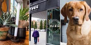 Tugg Burgers öppnar i Västerås 19 oktober. Franchisekedjan finns även i Göteborg, Borås, Helsingborg, Uppsala, Örebro, Lund och Malmö.