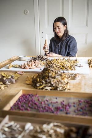 På bordet i vardagsrummet ligger  svamp i stora högar.