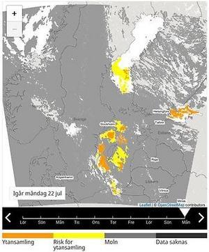 Färska satellitbilder från SMHI visar  att risken är stor för fler blomningar. De grå området består av moln som  skymmer bilden.