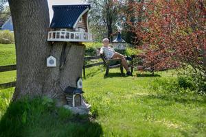 Runt om i trädgården hos Anders Regnander finns går det att hitta olika kreativa lösningar på småhus.