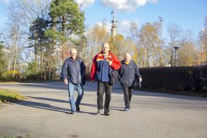 Sven-Åke Larsson, Dag Nilsson och Bo Nicklasson är tre Vallviksbor som känner sig svikna av Söderhamn Nära.