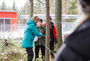 Maria Nilsson visar eleverna från Mo skola i Söderhamn hur de räknar ut hur mycket träd det finns i skogen.