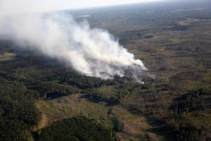 Kraftig skogsbrand vid Rörbo utanför Sala sommaren 2014. Foto: Peter Krüger / TT kod