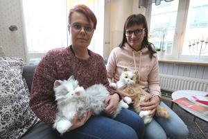 Mikaela Svensson, planerare, och  Anna Gunnarsson, enhetschef har köpt in två robotkatter till glädje för Oxelgårdens brukare.