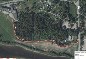 Den nya vägen ska gå här mellan Kyrkviken och skogen, alldeles ovanför betesmarkerna.