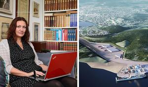 Else Ammor är en av dem som vänder sig mot placeringen av den planerade logistikparken. Bilden är ett montage. Foto: ST arkiv / Sundsvall Logistikpark AB.