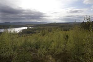 Miljön för inte äventyras av en gruva.Höga naturvärden och dricksvattenförsörjningen till kommunen är några skäl varför ansökan ska avslås menar Hudiksvalls kommun.