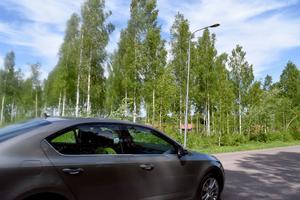 Ett rådjursstråk går från skogen över Fritidsvägen och in mot Jones väg i Nämnsbo.