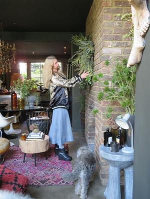 Den brittiska inredningsdesignern Abigail Ahern använder sig gärna av mörka färger och hennes stil beskrivs som ombonad och excentrisk.Foto: Ann-Katrin Berggren