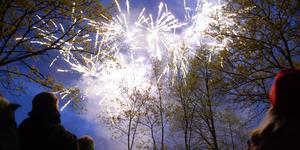 Många avfyrar fyrverkerier på nyårsnatten.  Foto: Jessica Gow/TT