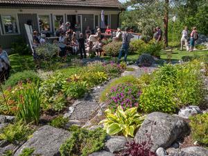 En skön vilostund i en harmonisk trädgård på berget, som ligger i Domsjö. Tina och Erik Karlsson har utnyttjat klippskrevorna för att få plats med de växter de vill ha. Foto: Christina Fryle