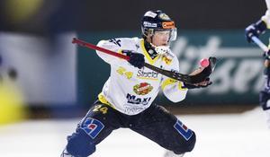 Michael Petterssons sena kvittering räddade Falu BS mot Nässjö. På söndag väntar final i supercupen för dalalaget.