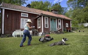 Ett hus med boende om sommaren och arbete på det och dess tomt. Foto: Janerik Henriksson / TT.