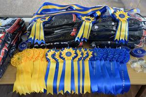 Långa rader av rosetter, gehäng, täcken och dekaler ska delas ut i de elva DM-grenarna i hoppning hos Falbygdens Hästsportförening i helgen. Foto: FHF