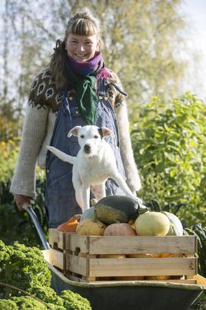 Bananen som hunden Ali kallas hänger gärna med bonden Sara när hon jobbar på gården.