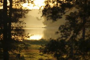 Kvällssol vid Brandalsund, där ett av de senast beslutade naturreservaten finns. Foto: Alex Roetemeijer