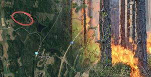Brandområdet täckte en yta motsvarande ungefär sex fullstora fotbollsplaner, men rapporterades under tidiga söndagskvällen släckt.