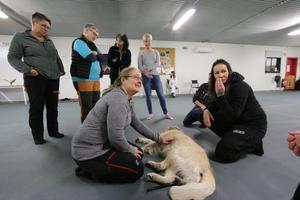 Flera av deltagarna hade med sina egna hundar och provade på att stretcha deras muskler.