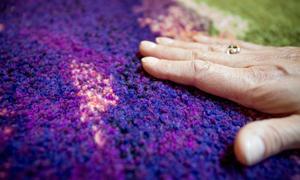 Flossa är egentligen en teknik för att tillverka mattor. Men ingen kommer att få gå på bildkonstnären Eva Olanders väv.
