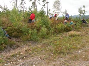 Rast med avstånd. Foto: Gunnar Olsson/Läsarbild