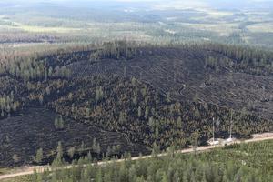 Flygbilder över den stora branden på Älvdalens skjutfält.