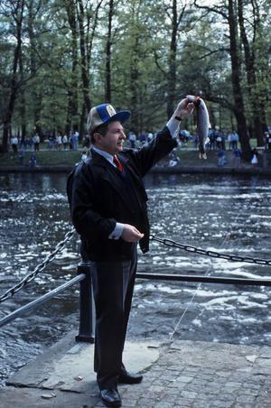 Landshövding Sigvard Marjasin fiskar lax vid Olaiplan 1989. Fotograf: Gunlög Enhörning