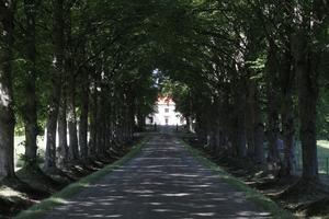 Den långa allén leder fram till det hus på gården där Anneli och Peter bor.