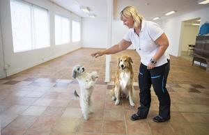 Sara Karlberg och hundarna Liten och Alvin gillade de 200 kvadratmeter stora lokalerna i Kolbäck där Svenska Terapihundskolan flyttade in 2018, då VLT gjorde ett reportage. (Arkivbild).