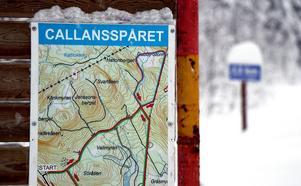 Callansspåret, ett av få skidområden i Ånge kommun som tillåter hundar.