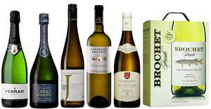 Här är två bubblande och fyra vita viner som erhöll guld i sina klasser när vinjournalisterna röstade fram 2017 års godaste och mest prisvärda viner.Bild: Sune Liljevall.