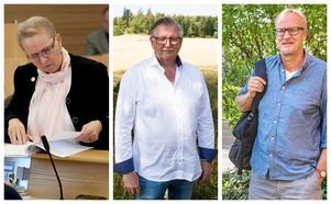 Anne-Marie Larsson (M), Tage Gripenstam (C) och Staffan Norberg (V), är alla lokala landstingspolitiker som tar plats i landstingsfullmäktige på ett eller annat vis.