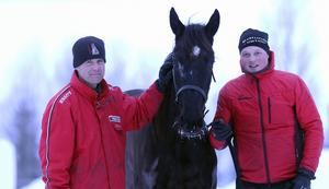Jämtlands senaste stjärnskott på travhimlen heter Weekend Fun och står i Hackså. Hästen köptes in på auktion i Stockholm, år 2016. Här ser vi tränaren Daniel Wikberg och skötaren Jimmy Dillner med stallets nya guldklimp.
