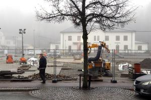Omgörningen av Flugparken i Lindesberg ses inte av alla som en nödvändighet.