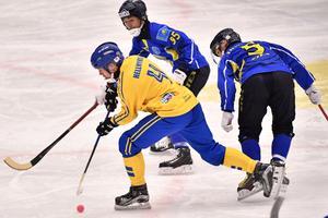 Hellmyrs på genombrott. Foto: Björn Larsson Rosvall / TT