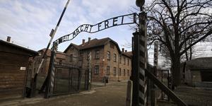 Det har gått 75 år sedan portarna till förintelselägret Auschwitz-Birkenau öppnades. Hur många elever har fått ta del av överlevandes vittnesbörd och dessutom fått göra egna reflektioner? Hur ofta lyfts rasism som en del av många svenskars verklighet i dag, frågar Mika Wallander. Foto: Markus Schreiber, TT.