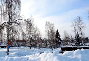 Flera olyckor har inträffat i Åsenområdet och långt ner på Åsenvägen.