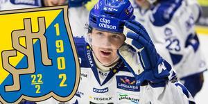 Johan Porsberger väljer bort spel i hockeyallsvenskan. Foto: Bildbyrån