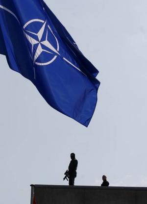 Sverige skulle tjäna på att gå med i försvarsalliansen Nato.