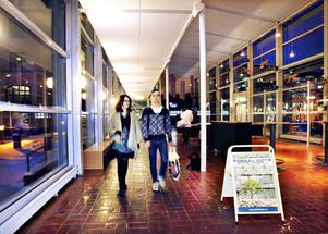 Jenny Axelsson och Jeff Albertsson från Linköping respektive Umeå trivs med studentstaden Gävle.