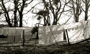 Under den gångna vårhelgen hängde tvätt på tork i vind och solsken.