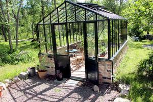 Växthus för tomater och frieri.