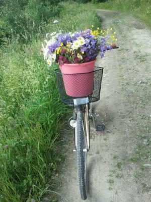 Midsommarkänslor i cykelkorgen.