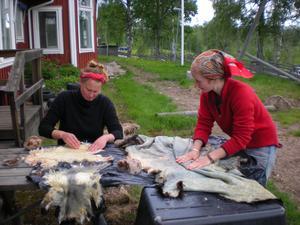 Linda-Lou Axelsson från Virsbo och Katien Fransson från (ursprungligen) Jönköping men nu nästan jämtländska bereder getskinn den gångna helgen, allt för sitt eget höga nöjes skull. Båda flickorna studerar vid Klarälvdalens folkhögskola i Värmland.