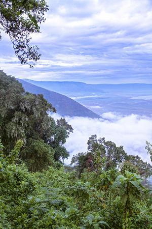 Utsikt ner mot UNESCO:s världsarv, Ngorongoro-kratern i Tanzania. En natioinalpark som hyser ett häpnadsväckande rikt och varierat djurliv. En ännu intakt Edens lustgård.  Foto: Sune Liljevall